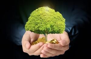 Créer de la valeur avec vos projets environnementaux
